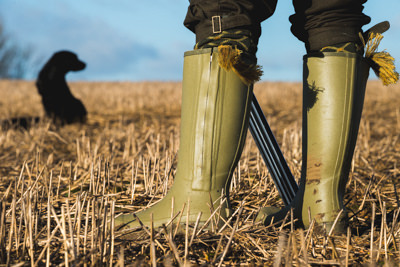 Jack Pyke Aschombe Zipped Wellington Boots with a gun dog in the background